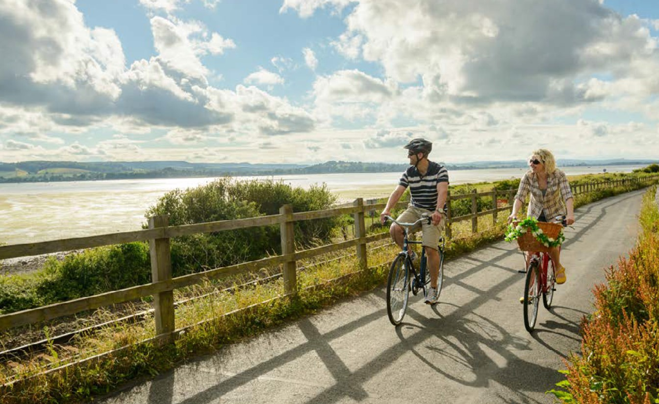image of the Exe Estuary Trail